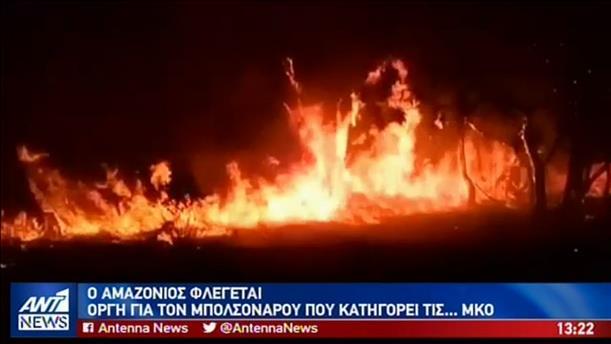Ανυπολόγιστη οικολογική καταστροφή από την φωτιά στον Αμαζόνιο