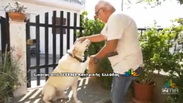 Πρόστιμο επειδή γαβγίζει ο σκύλος του!