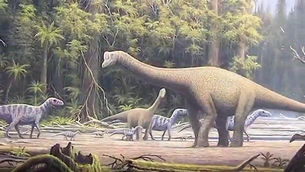 Ανακάλυψη απολιθώματος ενός Τιτανόσαυρου