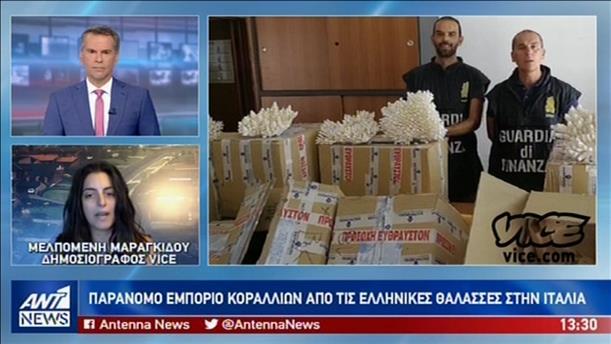 Ρεπορτάζ του VICE για το παράνομο εμπόριο κοραλλιών από τις ελληνικές θάλασσες