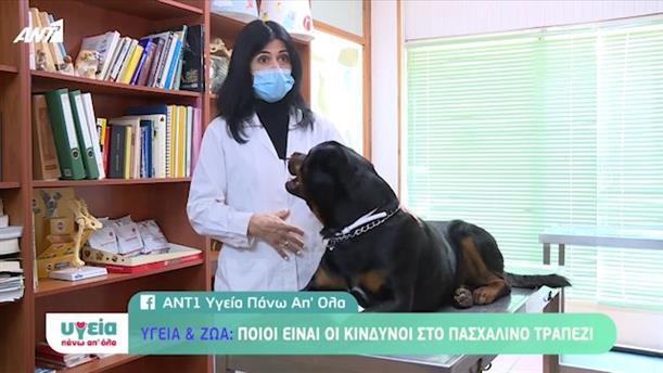 Υγεία & Ζώα - Υγεία Πάνω Απ όλα
