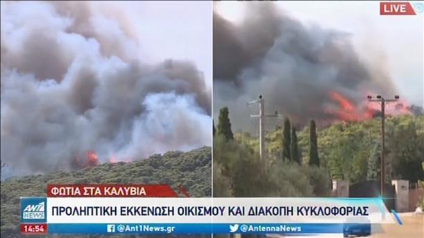 Προληπτική εκκένωση οικισμού λόγω της φωτιάς στα Καλύβια