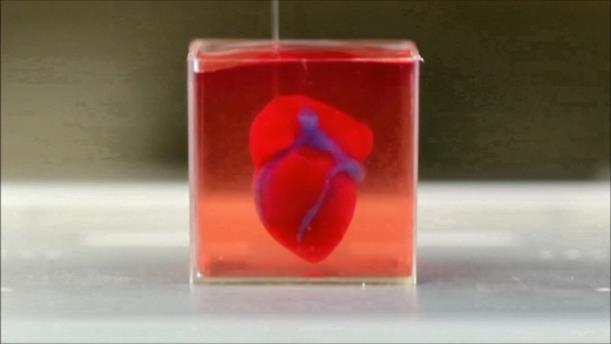 Επιστήμονες παρουσίασαν 3D εκτύπωση ανθρώπινης καρδιάς