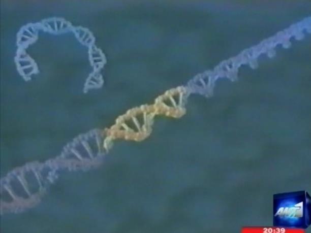 Φως στο DNA του εμβρύου