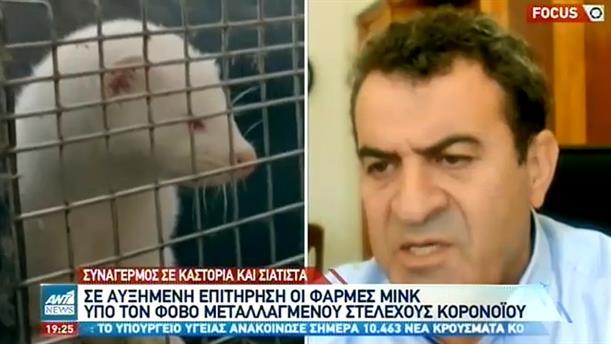 Κορονοϊός: Αγωνία για τους εκτροφείς βιζόν στην δυτική Μακεδονία