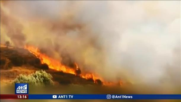 Θλίψη και καταστροφή από την φωτιά στις Μυκήνες