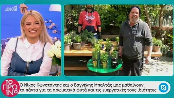 Αρωματικά λάδια με βότανα - Το Πρωινό - 13/04/2020