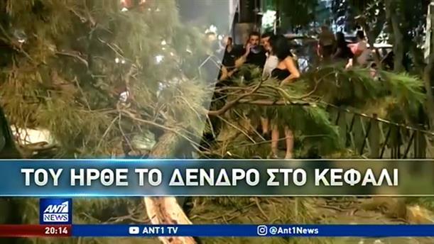 Αποκλειστικά στον ΑΝΤ1: Ο απεγκλωβισμός πεζού που καταπλακώθηκε από δέντρο