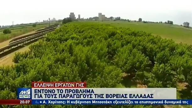 Έλλειψη εργατών γης στη βόρεια Ελλάδα