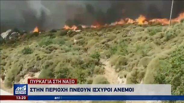 Μεγάλη φωτιά στη Νάξο