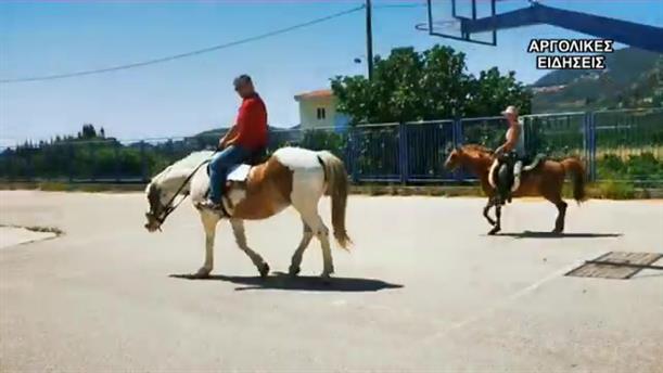 Με άλογα στις κάλπες της Αργολίδας