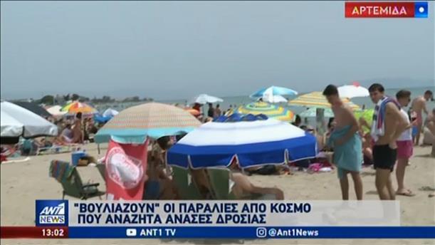 """""""Βουλιάζουν"""" από κόσμο οι παραλίες"""