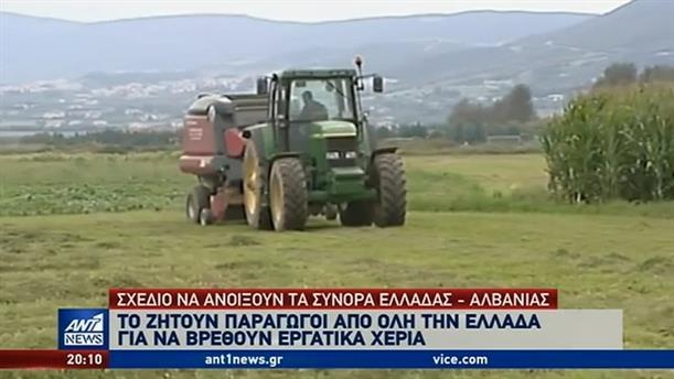 """Έλλειψη σε εργάτες γης """"έκοψε τα χέρια"""" των παραγωγών"""