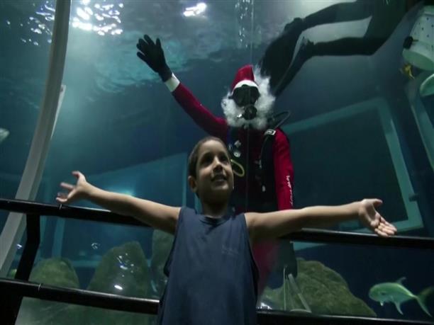 Άγιος Βασίλης δίνει μάχη με..καρχαρίες