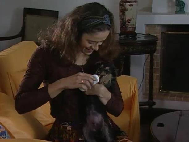 Το γελοίον του πράγματος (επεισόδιο 21 - Σκυλίσιες αρετές)