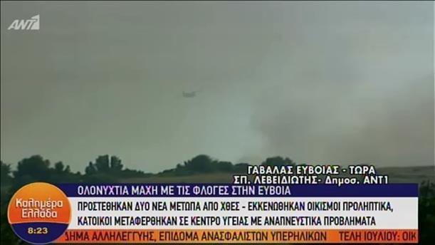 Συνεχίζεται η μάχη με τις φλόγες στην Εύβοια - ΚΑΛΗΜΕΡΑ ΕΛΛΑΔΑ - 05/07/2019