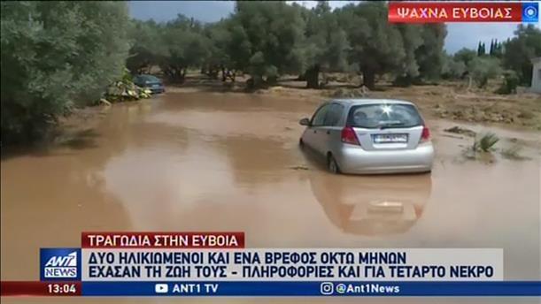 Πλημμύρες και καταστροφές σε Ψαχνά και Βασιλικό