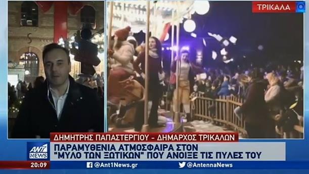 Παπαστεργίου στον ΑΝΤ1: Φωταγωγήθηκε το ψηλότερο φυσικό Χριστουγεννιάτικο δέντρο της Ελλάδας