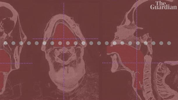 Βρετανοί επιστήμονες αναπαρήγαγαν τη φωνή Αιγύπτιου ιερέα με τη βοήθεια τεχνητών φωνητικών χορδών.