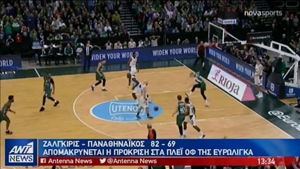 """""""Παραδόθηκε"""" και στη Ζαλγκίρις ο Παναθηναϊκός"""