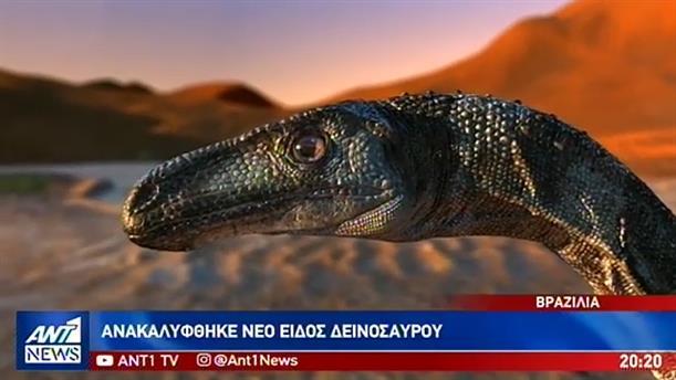 Παράξενες ειδήσεις από τον κόσμο