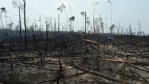 Drone αποκαλύπτει την καταστροφή από τις πυρκαγιές στον Αμαζόνιο