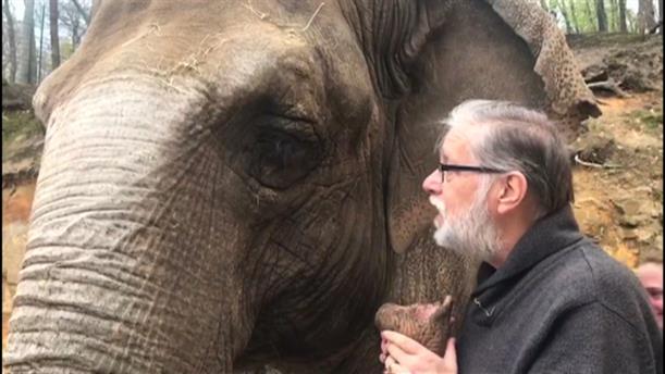 Ελέφαντας συνάντησε τον εκπαιδευτή του μετά από 35 χρόνια