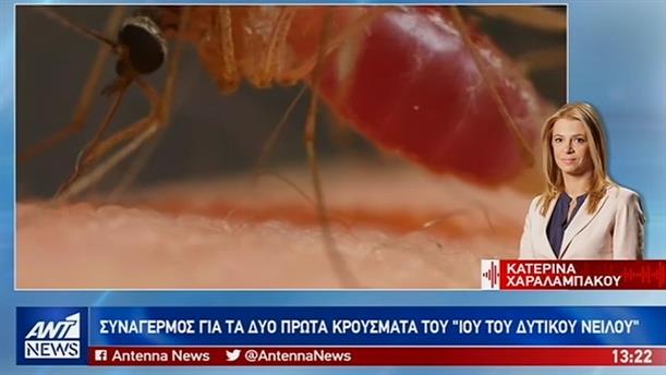 Νέα κρούσματα του ιού του Δυτικού Νείλου