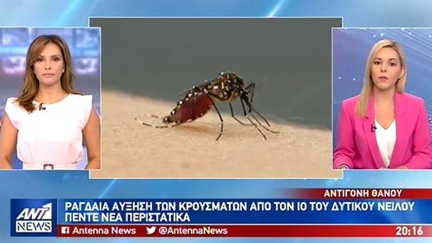 """""""Καλπάζει"""" ο ιός του Δυτικού Νείλου"""