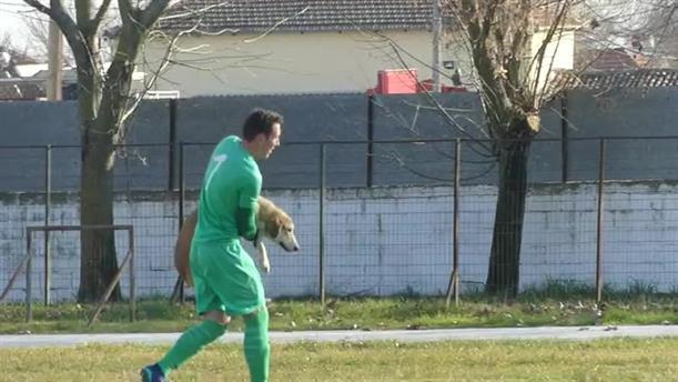 Εισβολή σκύλου σε αγώνα ποδοσφαίρου