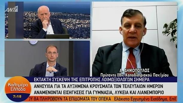 Αθανάσιος Δημόπουλος - Πρύτανης ΕΚΠΑ – ΚΑΛΗΜΕΡΑ ΕΛΛΑΔΑ - 28/01/2021