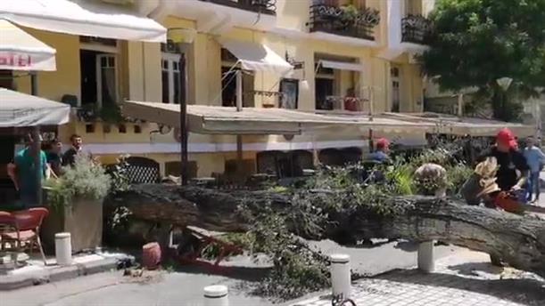 Δέντρο έπεσε σε καφέ στο κέντρο της Θεσσαλονίκης