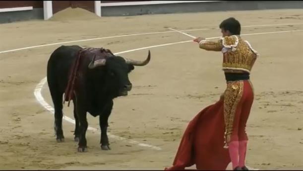 Ετοιμοθάνατος ταύρος καρφώνει με τα κέρατά του ταυρομάχο