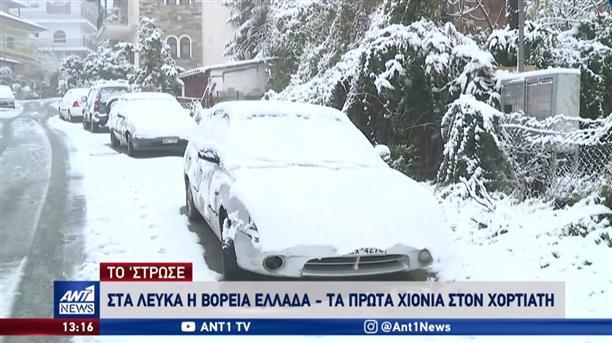 Στα λευκά η Βόρεια Ελλάδα: Έπεσαν τα πρώτα χιόνια