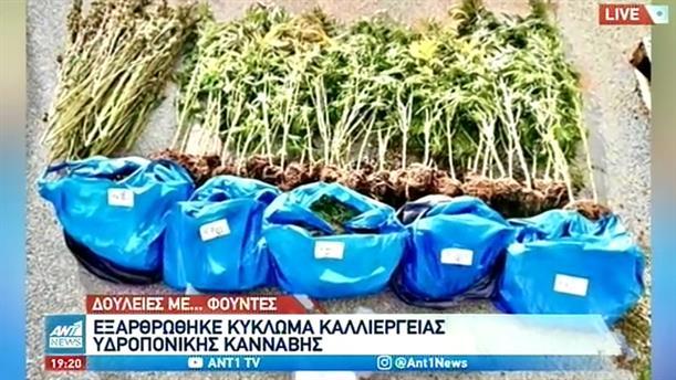 Σπείρα είχε στήσει «γραμμή παραγωγής» ναρκωτικών