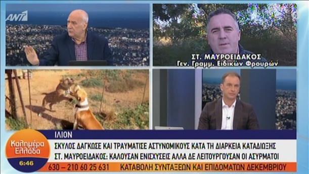 """Ο Στ. Μαυροειδάκος στην εκπομπή """"Καλημέρα Ελλάδα"""""""
