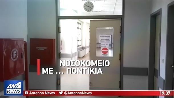 Εικόνες ντροπής με ποντίκια στο νοσοκομείο Κιλκίς