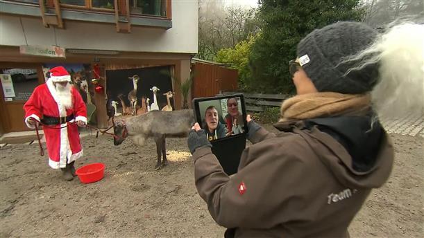 Γερμανία: Πόλη εγκαινιάζει την υπηρεσία «νοίκιασε έναν τάρανδο»