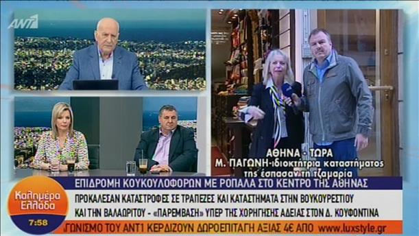 Ιδιοκτήτρια καταστήματος που της έσπασαν τη τζαμαρία, στην εκπομπή «Καλημέρα Ελλάδα»