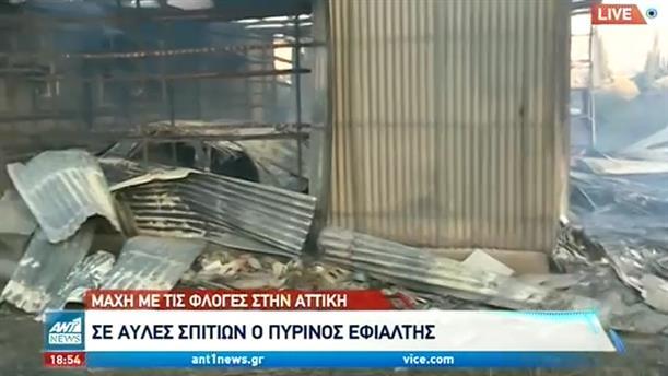 Καταστροφικό το πέρασμα της φωτιάς από τα Καλύβια