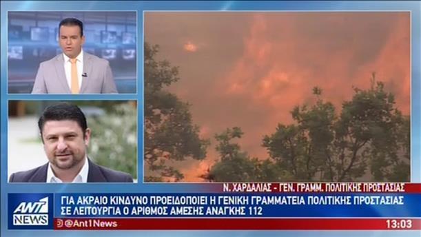 ΓΓ Πολιτικής Προστασίας στον ΑΝΤ1: στα ύψη σήμερα ο κίνδυνος πυρκαγιάς