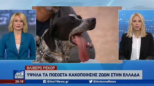 Θλιβερά είναι τα στοιχεία για την κακοποίηση των ζώων στην Ελλάδα