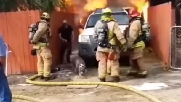 Μπήκε στο φλεγόμενο σπίτι του για να σώσει τον σκύλο του