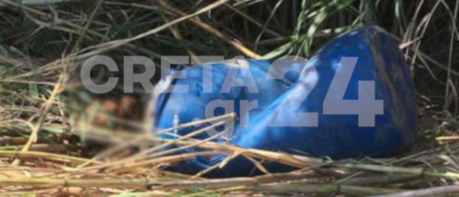 Πτώμα σε βαρέλι στο Ρέθυμνο: Σε νεαρό άνδρα ανήκει η σορός (εικόνες)