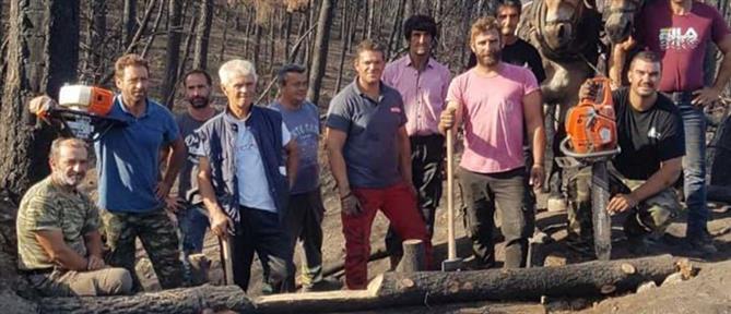 """Βόρεια Εύβοια: """"Τροχάδην"""" οι εργασίες αποκατάστασης στις πυρόπληκτες περιοχές (εικόνες)"""
