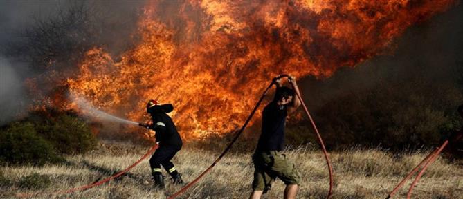 Δύο μέτωπα φωτιάς στην Βοιωτία