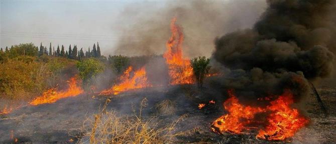 """ΓΓΠΠ: έξι περιοχές στο """"κίτρινο"""" για κίνδυνο πυρκαγιάς την Πέμπτη (χάρτης)"""