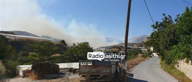 Πυρκαγιά ξέσπασε στην Ιεράπετρα