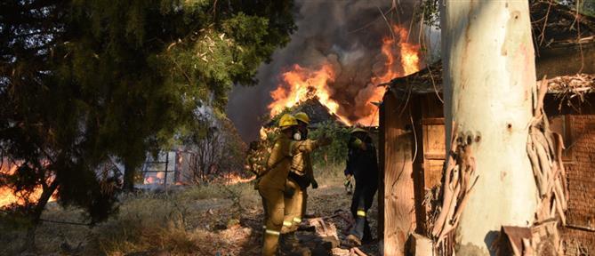Φωτιά στην Αχαΐα - Χρυσοχοΐδης: Κατορθώσαμε να μην λάβει μεγαλύτερες διαστάσεις