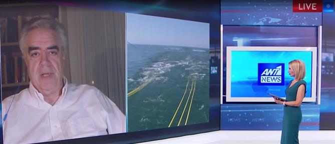 Κούρκουλας στον ΑΝΤ1 για Τουρκία: έχουμε ισχυρούς συμμάχους και ψυχραιμία (βίντεο)